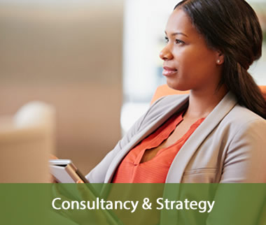 Consultancy & Strategy Procurement 1.2